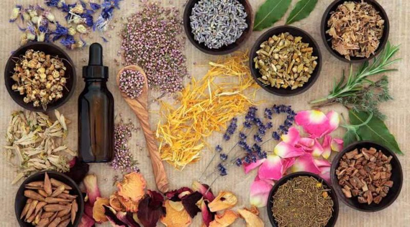 Holistic Health Herbal Medicine