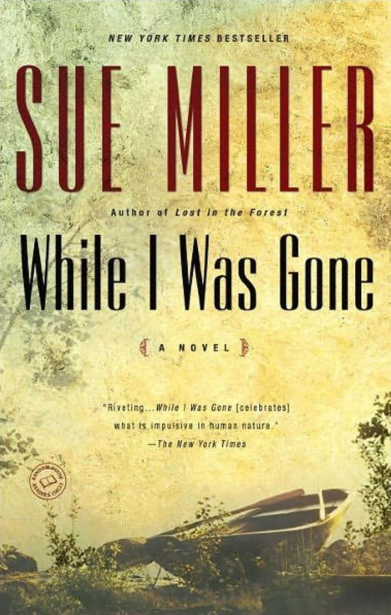 While I Was Gone Book Cover